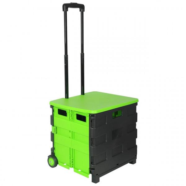 Einkaufswagen mit Deckel gross Grün