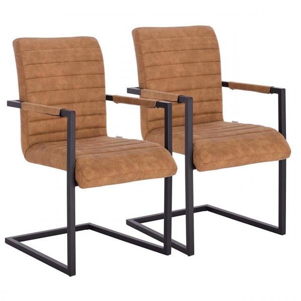 2er Set Freischwinger Stuhl Küchenstuhl
